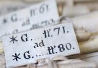 Chiusura estiva dell'Archivio Storico Diocesano